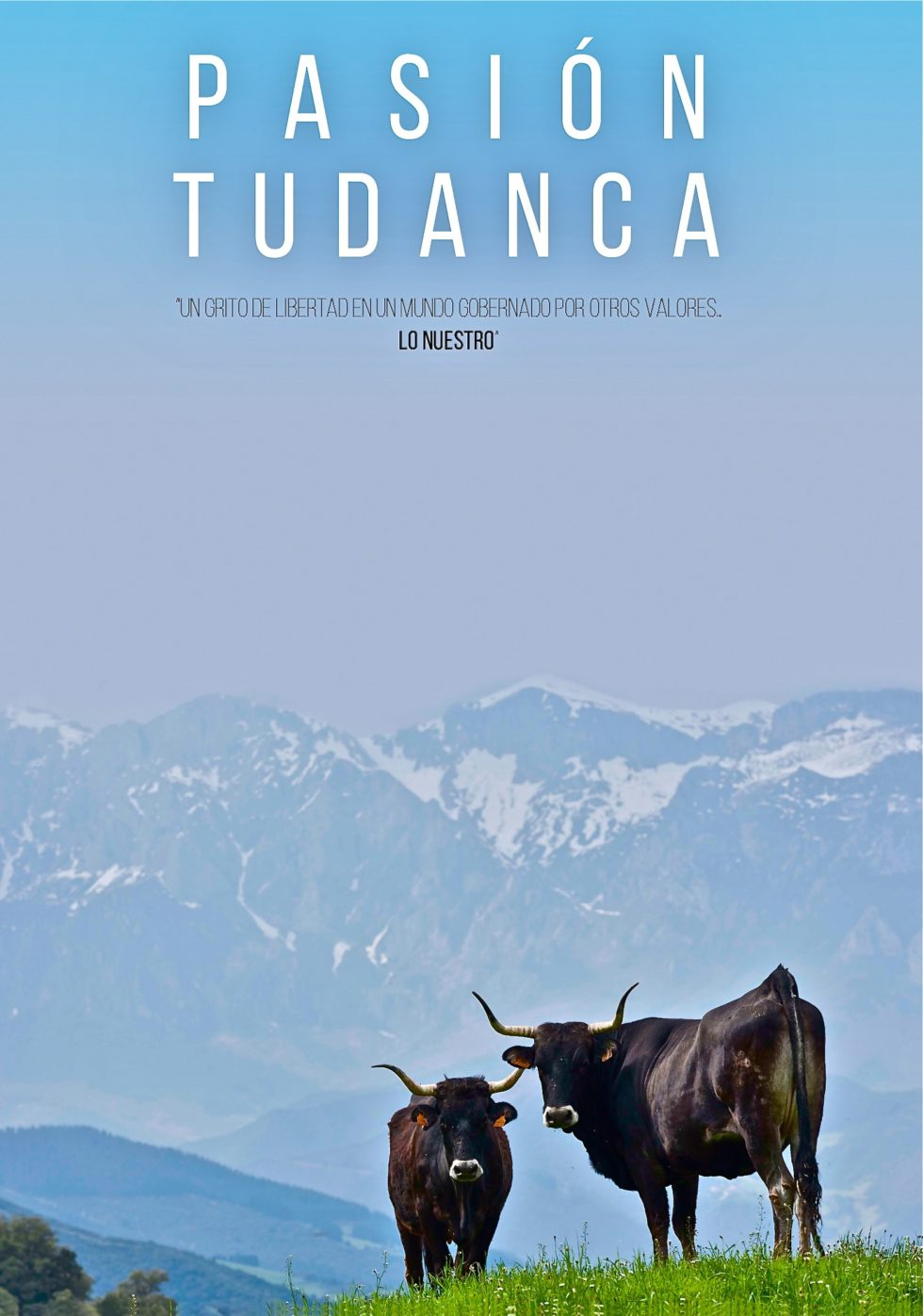 "MOVISTAR + ADQUIERE LOS DERECHOS DE NTRO DOCUMENTAL ""PASIÓN TUDANCA"""